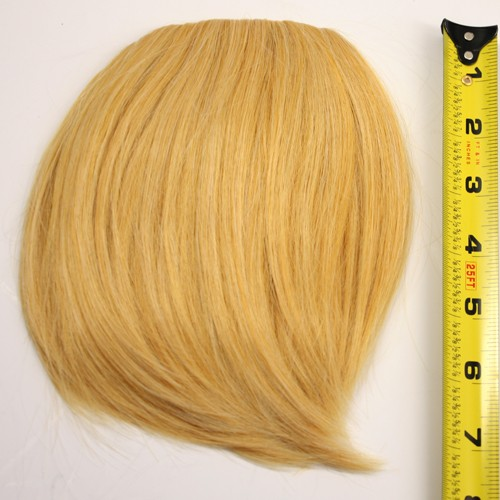 Short Bangs - Butterscotch Blond Blend